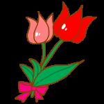 【2回目のがん闘病記】2015年4月26日~6月2日 経口抗がん剤2クール開始と便の調子